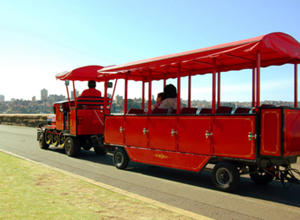 People Riding Trackless Train